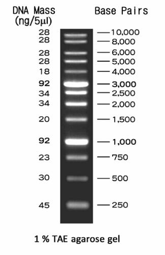 Kem En Tec Nordic A S Nippon Genetics