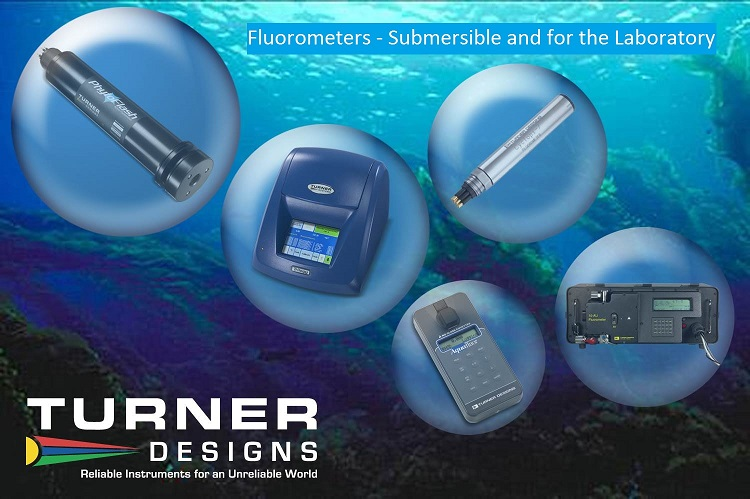 Turner Design -Web